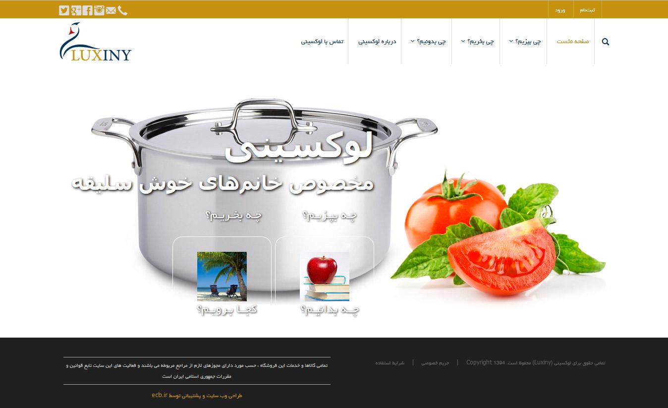 تصویری از صفحه نخست وبسایت شرکت تولید لوازم آشپزخانه لوکسینی